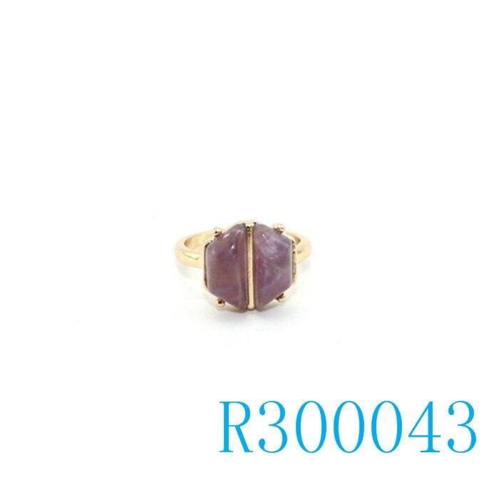 R300043