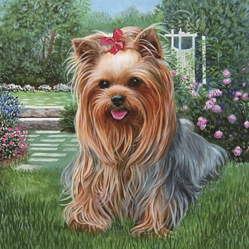 3D Full Diamond Embroidery Diamonds Mosaic Kit Diy Diamond Painting Animal Pasted Pictures Square Resin Drill Princess Dog