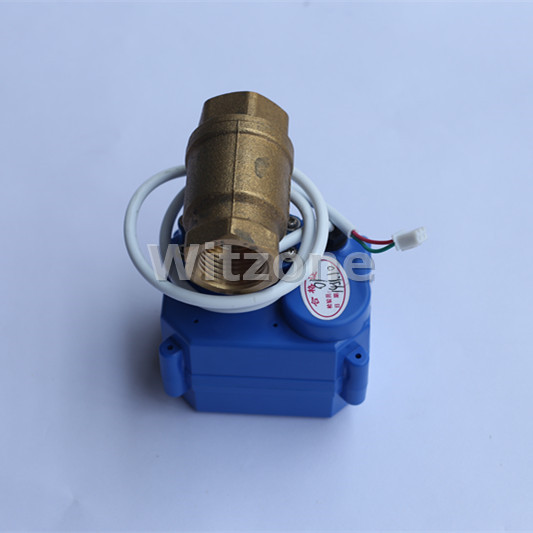 DN25 Motorized Ball Valve Compatible for WLD-807 Water Leak Alarm System, Good Quality 1 Brass Electronic Valve, Free Shipping dn15 20 25 electric shut of valve for water leak control 2 way brass valve with water leak alarm device