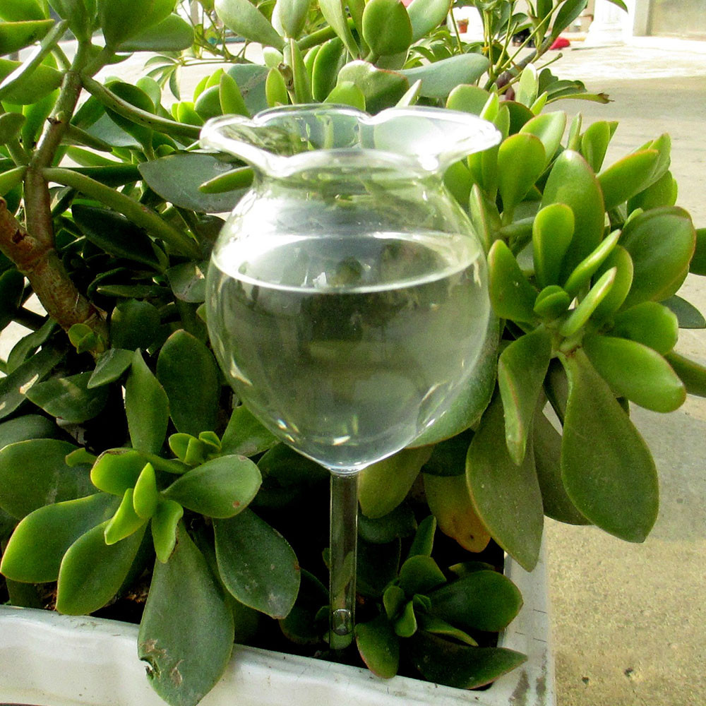 New Arrival Indoor Automatic Flower Glass Plant Flowers Watering Device Sprinkler Garden Flower Self Watering Container#10