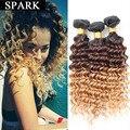 7A barato Onda Profunda Brasileña Virgin Hair 3/4 Bundles Ombre Humano Peluca de pelo Profunda Brasileña Del Pelo Rizado Rizado Pelo Virginal rizado LY12