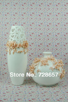 Traditional Chinese Style Porcelain Vase. Decoration Vase for Room.