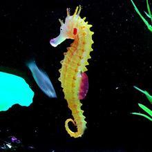 Glowing Luminous Artificial Simulation Hippocampus Environmentally Friendly Material Silicone Aquarium Fish Tank Decorations
