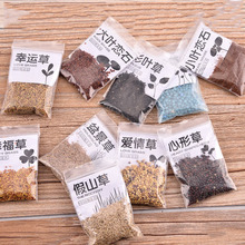 10 Different Absorbent Stone Plants Grass Seeds for Rockery Bonsai Landscaping Decoration Spring Grass Bonsai Tree Seedsplants