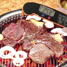 Smart Electronic Thermometer For  Food Meat Large Digital Screen Foldable Probe Kitchen Supplies Cooking Dining BBQ Tools DT-10
