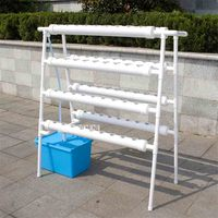 Hydroponics System Double sided Ladder Type Soilless Vegetable Cultivation Equipment Balcony Pipeline Hydroponic Planting Rack