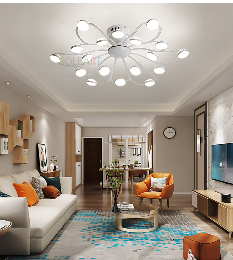 8047-LED Ceiling Light Sconce Luminaria Chandelier Ceiling Avize Light Fixtures Ceiling Lamp_18