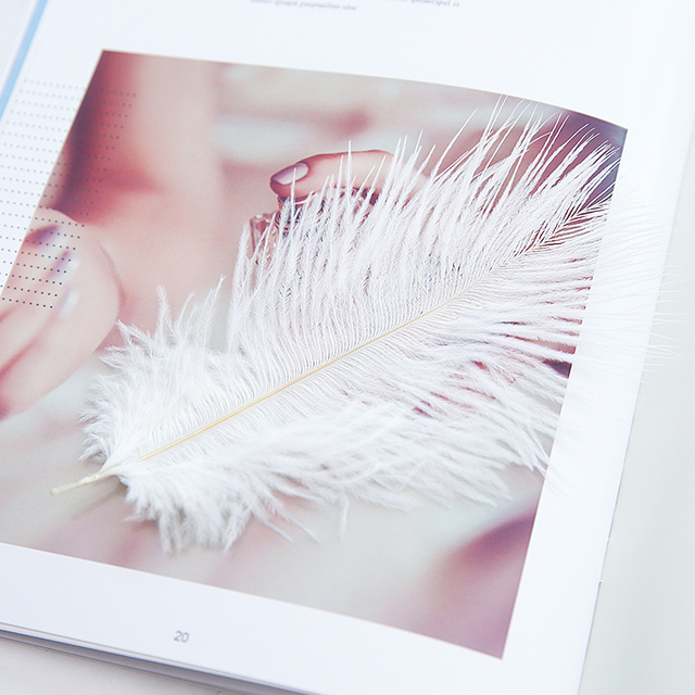 High Quality White Natural Ostrich Feathers ins Photography Accessories DIY Decoration for Bracelet Ring Jewelry Lipstick Makeup 4