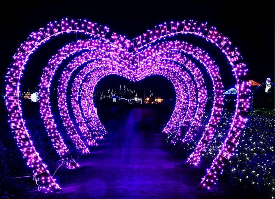 Lighting Strings wedding christmas lights led strings 10m AC220V 110V Led Strip Light Garden Garland (2)