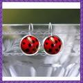 Божья коровка серьги - насекомых ювелирные изделия - симпатичные божья коровка красный и черный ювелирные изделия для женщин Fun уникальный серебряный подарки к юбилею