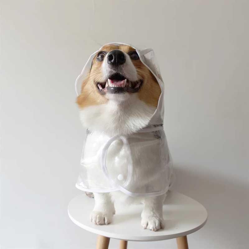 مقاوم للماء الكلب جرو معطف واق من المطر شفاف معطف واقي من المطر الحيوانات الأليفة معاطف للكلاب الصغيرة ملابس الحيوانات الأليفة تشيهواهوا كورجي تيدي يوركى GGC21