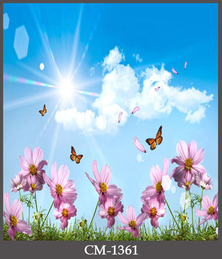 Hd 1600x900 Wallpaper: Pink Flowers Butterfly Backgrounds Sun Shinning