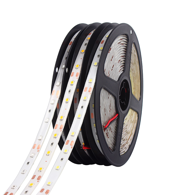 LED Strip SMD3528 5m 60led/m 300LEDs Waterproof 12V RGB White Flexible Light Indoor Decorative LED Type Home Decoration Lamps