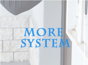 system (8)