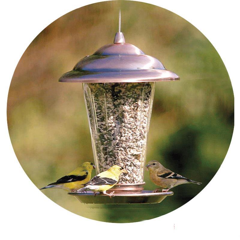 Haute qualité Style européen jardin mangeoire pour oiseaux sauvages mangeoire pour oiseaux en plein air s récipient de nourriture