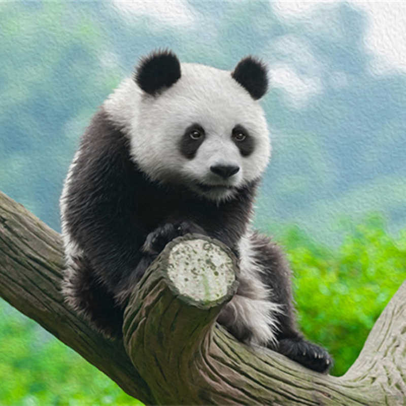 Custom Photo Wallpapers 3d Panda Modern Wallpaper For Walls 3d Murals Wall Papers Home Decor Nature Landscape For Living Room