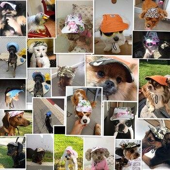Dog Caps 2