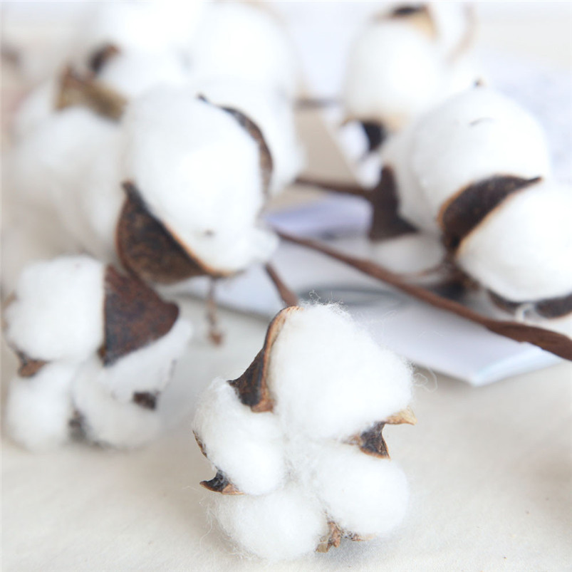 21 inch Naturally Dried Cotton Stems Artificial flower Farmhouse Sty Home Decor Bouquet Vase Holiday party Literary Simple H01 (4)