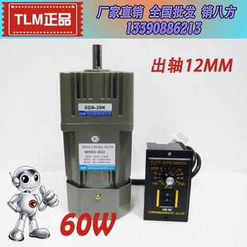 AC 60W 220V AC gear motor, M560-402 speed / variable speed motor ordinary type