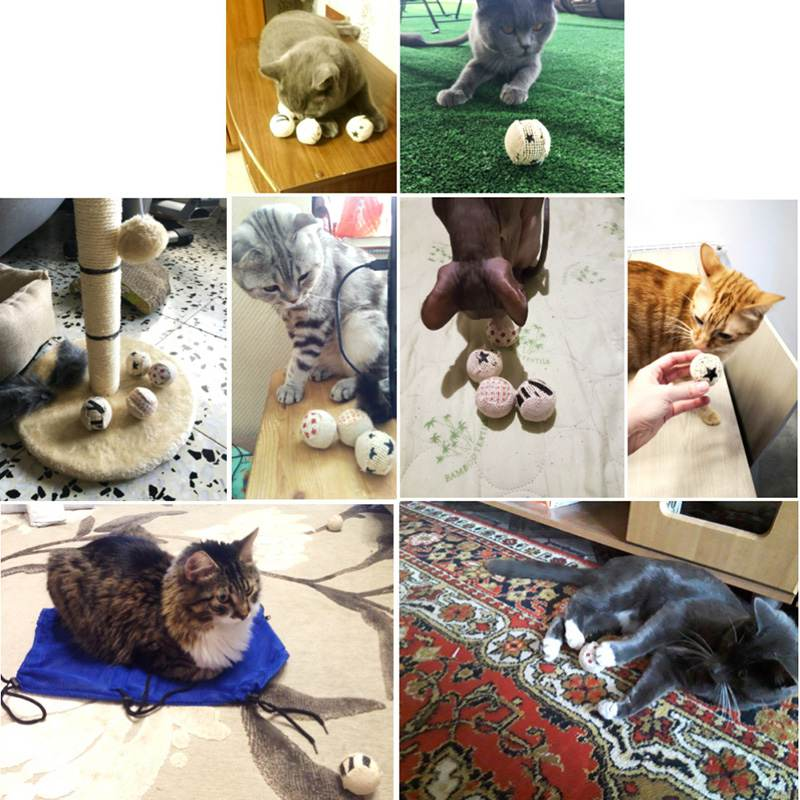 Interactive Cats Toys Ball Cat Toy Play Chewing Rattle Scratch Catch Pet Kitten Cat Exre ...