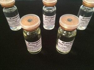 Image 2 - 5pcs ชุด Boto X + Hexapeptide + Hyaluronic Acid + คอลลาเจน + Sheep Placenta เซรั่มยกกระชับผิว Anti  ทาปากรักแร้ขาหนีบและหัวนมชมพูหลอดสีแดงขนาด 15 มล.จำนวน 1 หลอด.ฟรี Skin Care