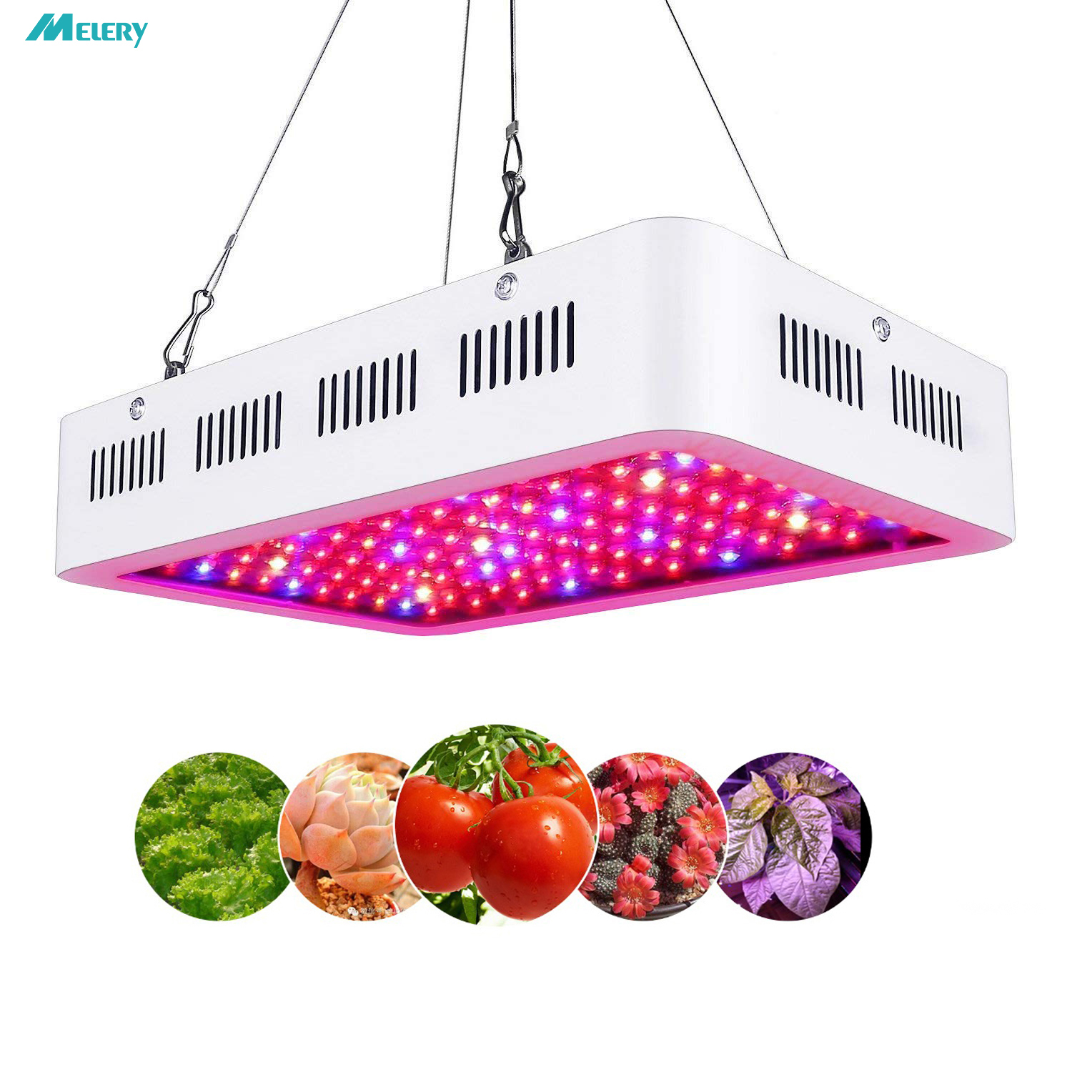 LED Grow Light 300 600 1000W Full Spectrum for Indoor Plant Lamp with UV IR Light