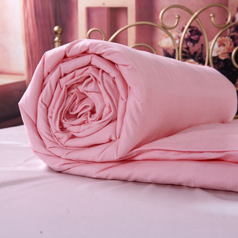 Summer Autumn Silk Blankets 100 Mulberry Silk Quilt Quality 1000 Cotton Duvet Cover Winter Home Silk
