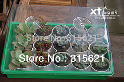 Seedling box germinating box nursery trays with Vent Size 38*24*18cm