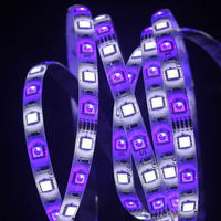 LED Strip 5050 Waterproof RGBW DC12V 60 LED M RGB White RGB Warm White Flexible LED