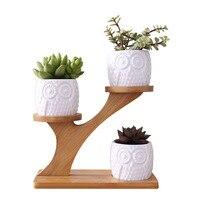 1 Set Modern Minimalist White Ceramic Flowerpot Succulent Plant Pot 3 Bonsai Planters with 3 Tier Bamboo Shelf Home Garden Decor