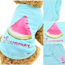 Watermelon Candy Color  Clothing