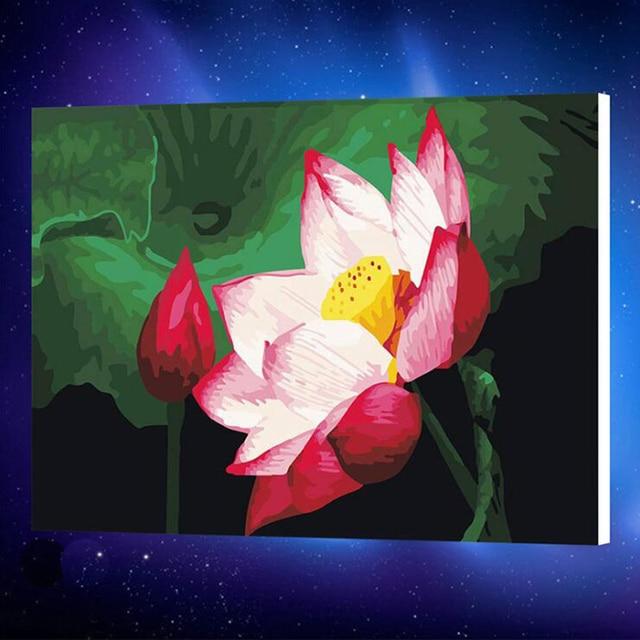 50x65 Cm Fiore Di Loto Il Fai Da Te Digitale Pittura A Mano