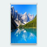 Window Curtain Sunscreen 3D Roller Blind landscape for Any room decoration roller blinds for windows customize 3D