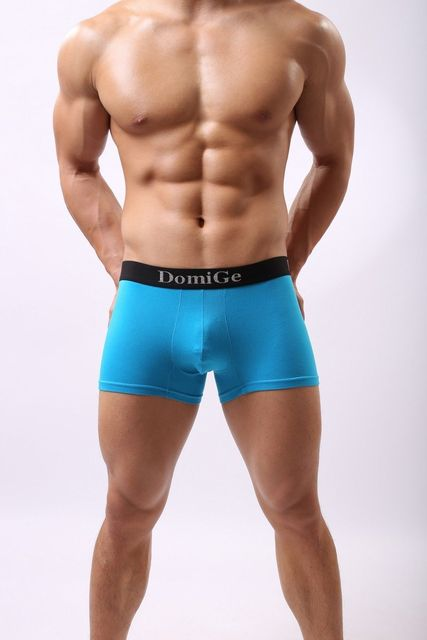 Domige Mens Underwear Geronimo Sexy Net Boxer Black Blue M/L/XL/2XL/3XL 5039