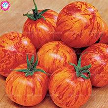 Popular Organic Herbs Seeds-Buy Cheap Organic Herbs Seeds lots from