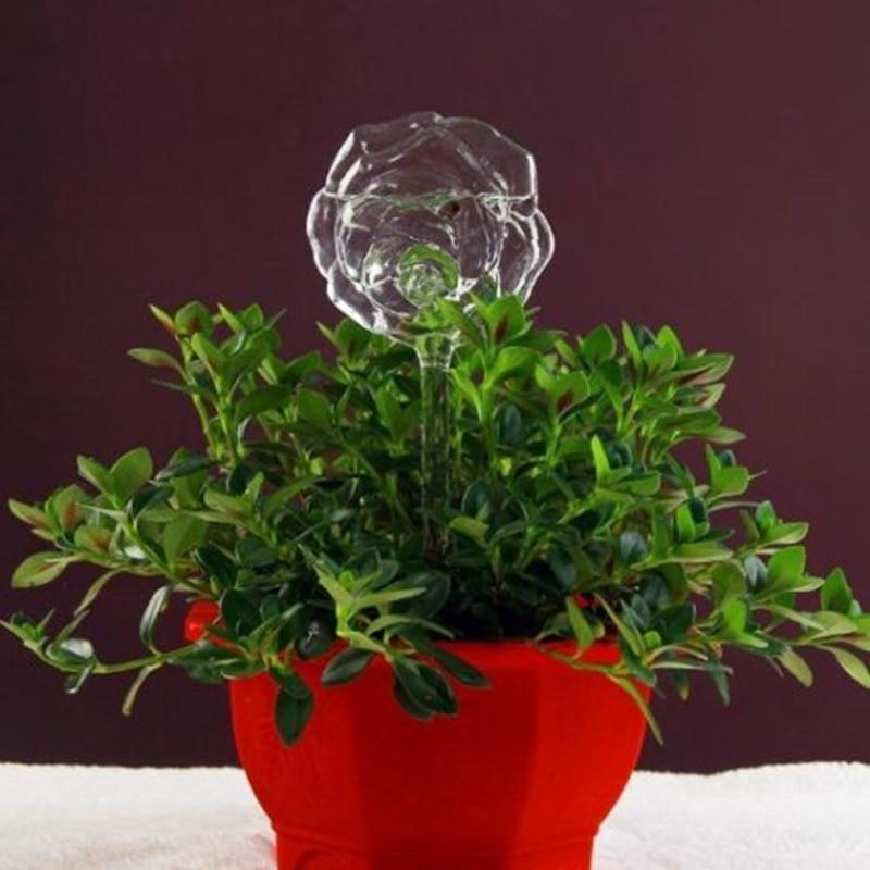 Distributeur d'eau automatique | Plante en verre 6 Types, distributeur de fleurs, auto-arrosage, dispositif d'oiseau, Design de cœur, arrosoir de plantes