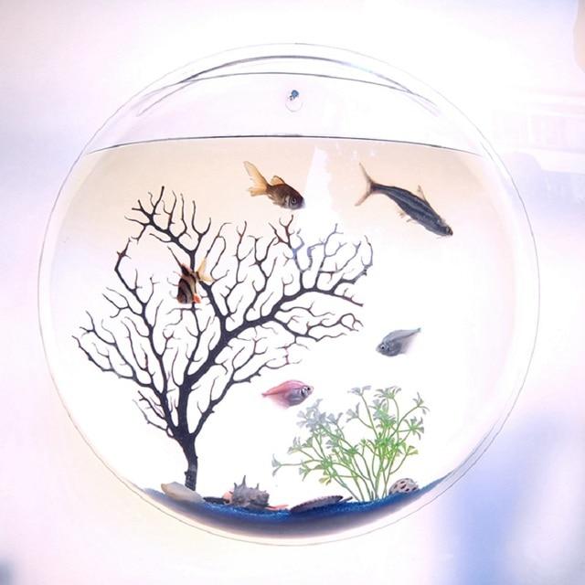 Wall Hanging Aquarium