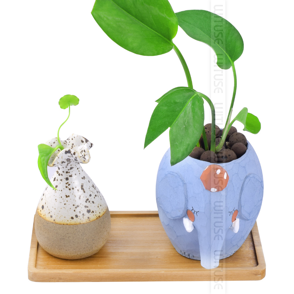 Simplism Chinese Bamboo Crafts Fern Succulent Bonsai Planter Flower Box Tray 14