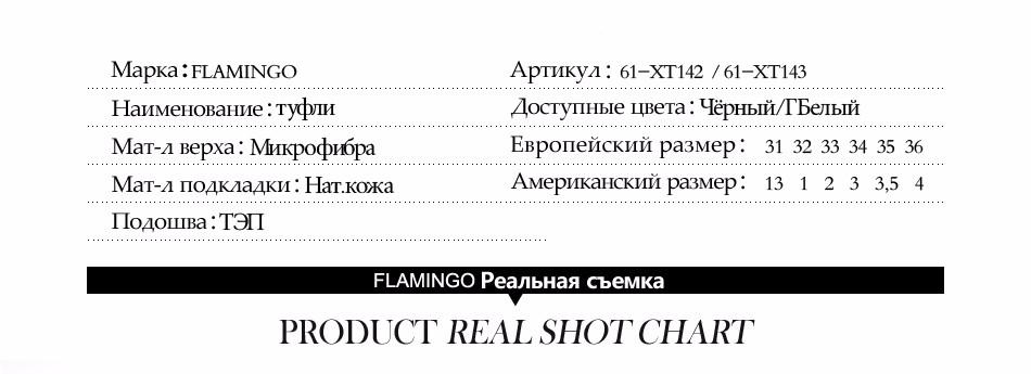 61-XT142,-61-XT143_05