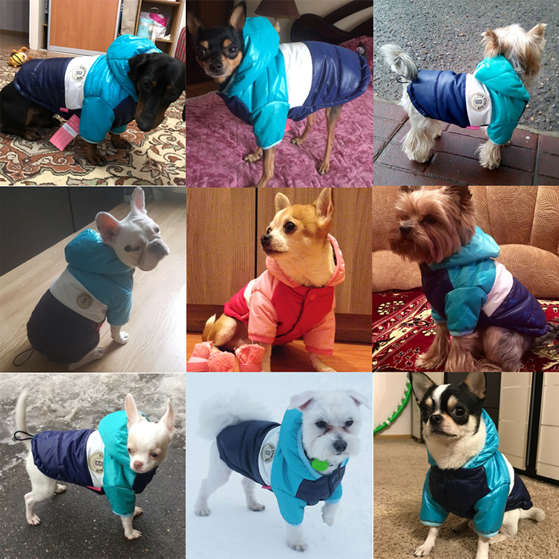 Waterproof and Hooded Dog Jacket with Leash Hole Ideal for Autumn/Winter Season 4