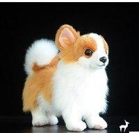 Juguetes de peluche perros perros perros De Peluche y Felpa Animales Juguetes de Anime Para Niños Niñas Niños Hobby Brinquedos Meninas Menina blanco pomeranian