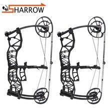 1set 40-60lbs Arrow Steel Ball Dual-purpose Compound Bow IBO 310/370FPS 80%  Labor Saving Ratio For Hunting Shooting