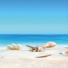 Laeacco Tropical Sea Beach Coral Shell Sand Blue Sky Holiday Baby Scenic Photo Background Photography Backdrops For Studio