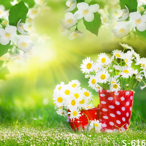 f87db1bcd Suporte Grama Sol de Primavera Flores Da Margarida Branca Vermelho  Personalizado 8x8FT Fotografia Fundos Backdrops Estúdio Vinil 240 cm x 240  cm em Fundo de ...