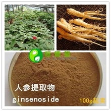Free shipping High quality anti – tumor, anti – aging health care raw ginseng extract ginseng total saponins 200g
