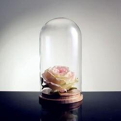 Szkło dzwon szklany dzwon Gass odcień kwiaty szklana kopuła czapka z drewnianą podstawą Home Decor wazony do dekoracji pokrywa w kształcie przezroczyste puste -