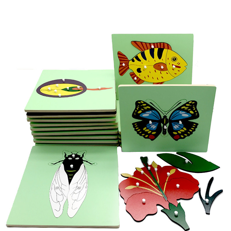 Baby Early Educational Toys Animals Plants Panel 3D Puzzle Montessori Wooden Toys Frog Horse Fish Turtle Ect. Puzzles For Kids