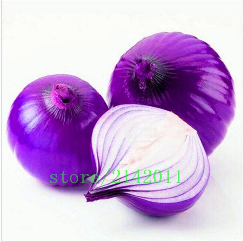 100 Семена/мешок фиолетовый лук семена, посадка лук, Органические Фамильные Семена овощных культур, сладкий и хит растений для дома сад