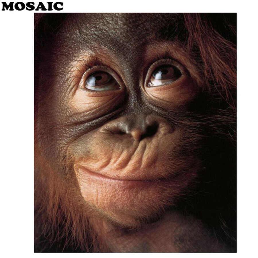 Resultado de imagen de monos gif pinterest