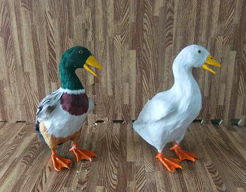 about 27x24CM simulation duck toy lifelike fur model decoration gift t145 big new simulation duck toy lovely white lifelike duck about 25x14x38 5cm